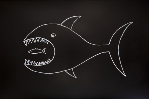 Blackboard Drawing of Shark